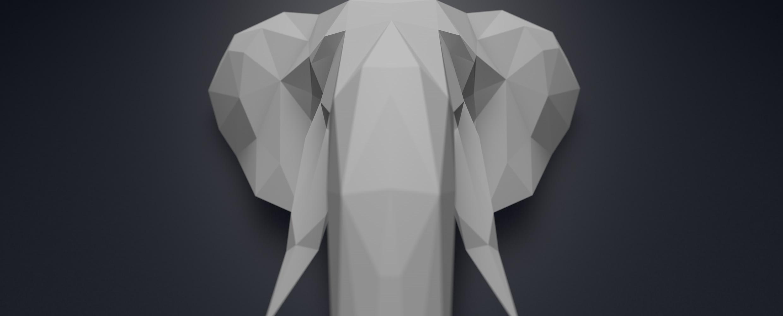 elefant Weitwinkel